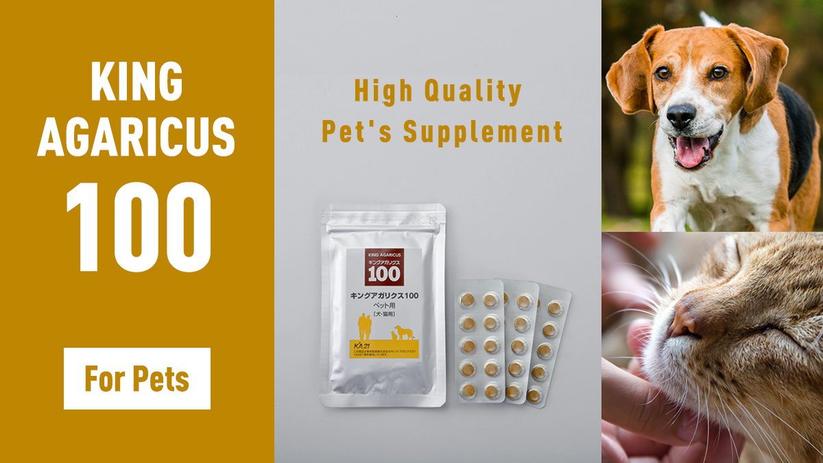 King Agaricus 100 for Pets